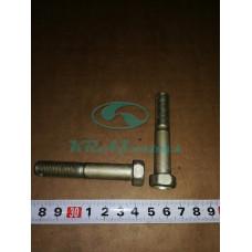 Болт 2М12х1,25-6gх70 ОСТ 37.001.123-96